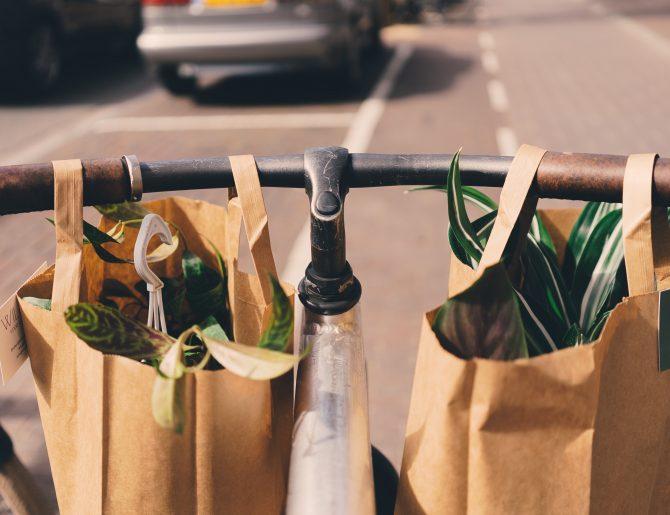Die 6 besten Apps für mehr Nachhaltigkeit im Alltag
