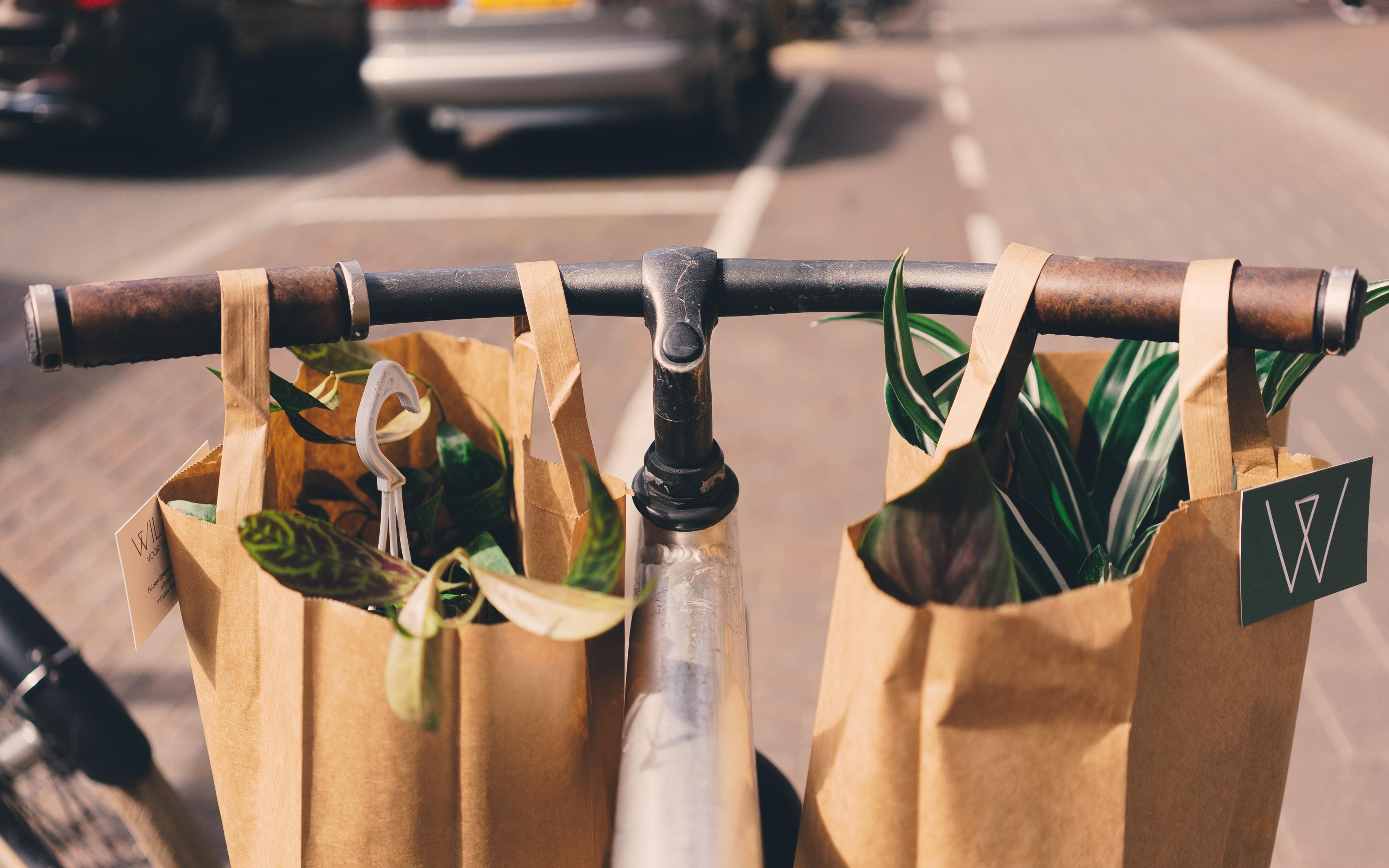 Fahrradlenker mit Einkaufstaschen